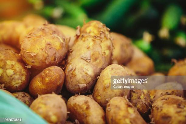 fresh potatoes at farmers' market - prepared potato stock pictures, royalty-free photos & images