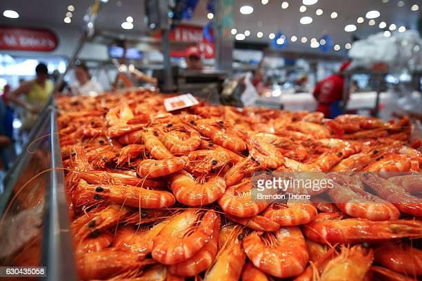 Fresh prawns are displayed for sale at the Sydney Fish Market on December 23 2016 in Sydney Australia The Sydney Fish Markets experiences its busiest...