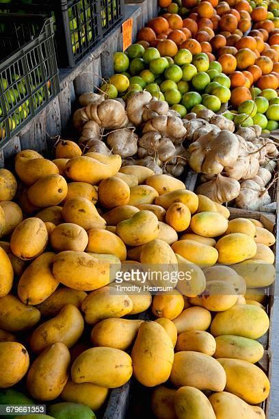 fresh produce at a fruit & vegetable stand - timothy hearsum fotografías e imágenes de stock