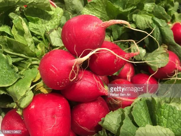 fresh radishes on display for sale in food market - rafael ben ari stock-fotos und bilder
