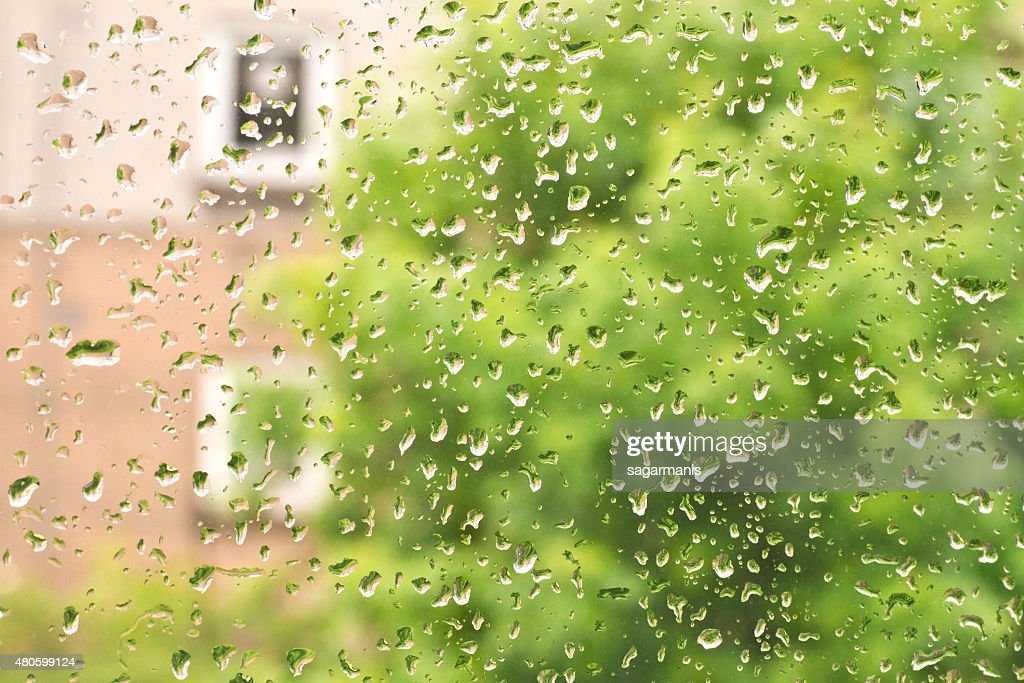 Fresh rain drops in window glass : Stock Photo