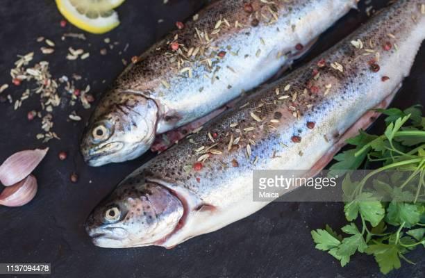 Frische rohe Forellenfische auf schwarzem Hintergrund