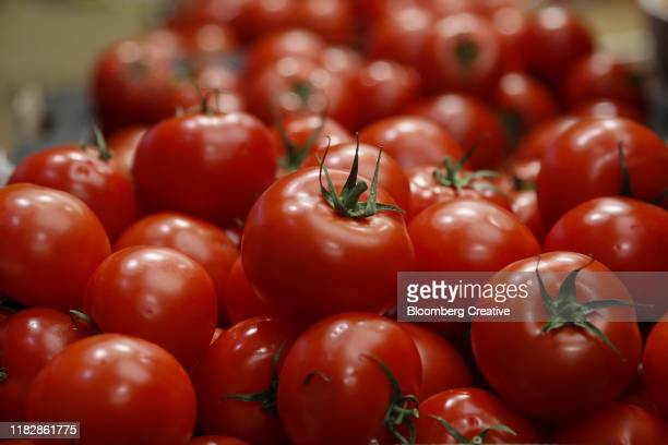 fresh red tomatoes - red stock pictures, royalty-free photos & images