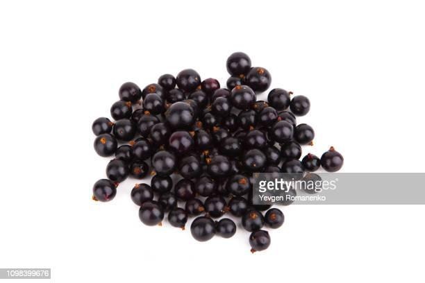 fresh ripe blackcurrant isolated on white background - johannisbeere stock-fotos und bilder