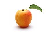 Fresh ripe one apricot with leaf
