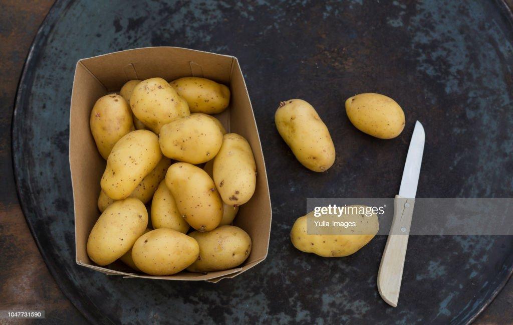 fresh ripe potatoes on table : Stock Photo
