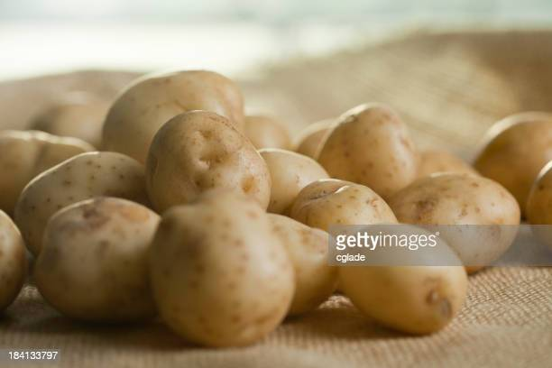 Fresh Ripe White Potatoes