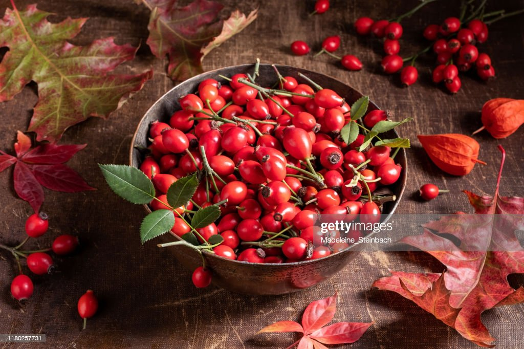 Fresh rose hips in a bowl on a table : Stock Photo