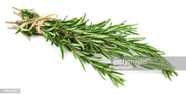 fresh rosemary herb on white background - twijg stockfoto's en -beelden