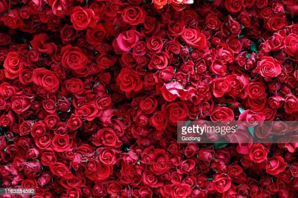 Fresh roses for sale at market stall Dalat Vietnam