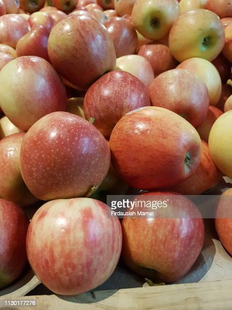 fresh royal gala apples - royal gala apple stock photos and pictures