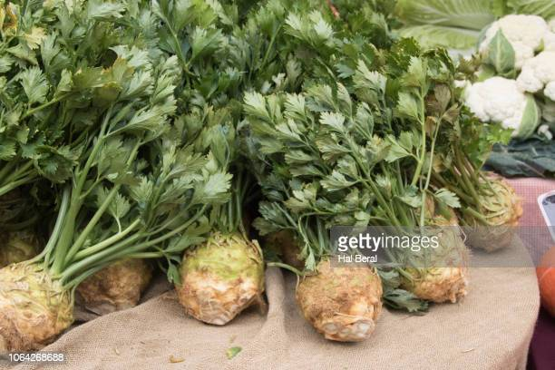 fresh rutabaga for sale at the farmer's market - rutabaga stock pictures, royalty-free photos & images
