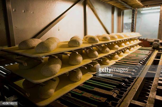 Fresh rye bread sits inside of a proofer to rise at the Orlando Baking Co in Cleveland Ohio US on Wednesday Aug 13 2014 Wheat rose after the US...