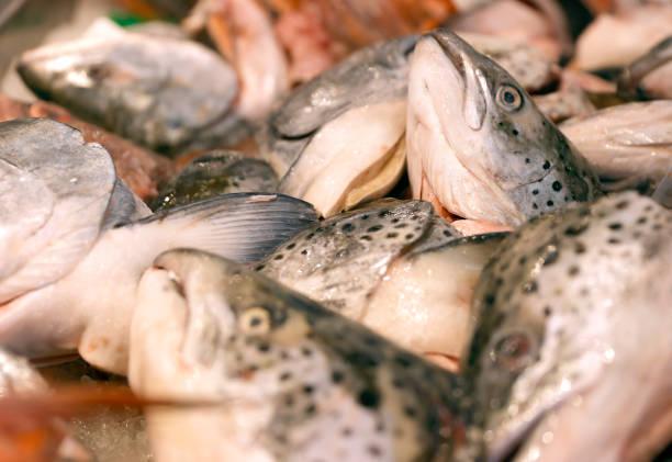 CA: Seafood Prices Surge As Restaurants Struggle To Keep Items On Menus