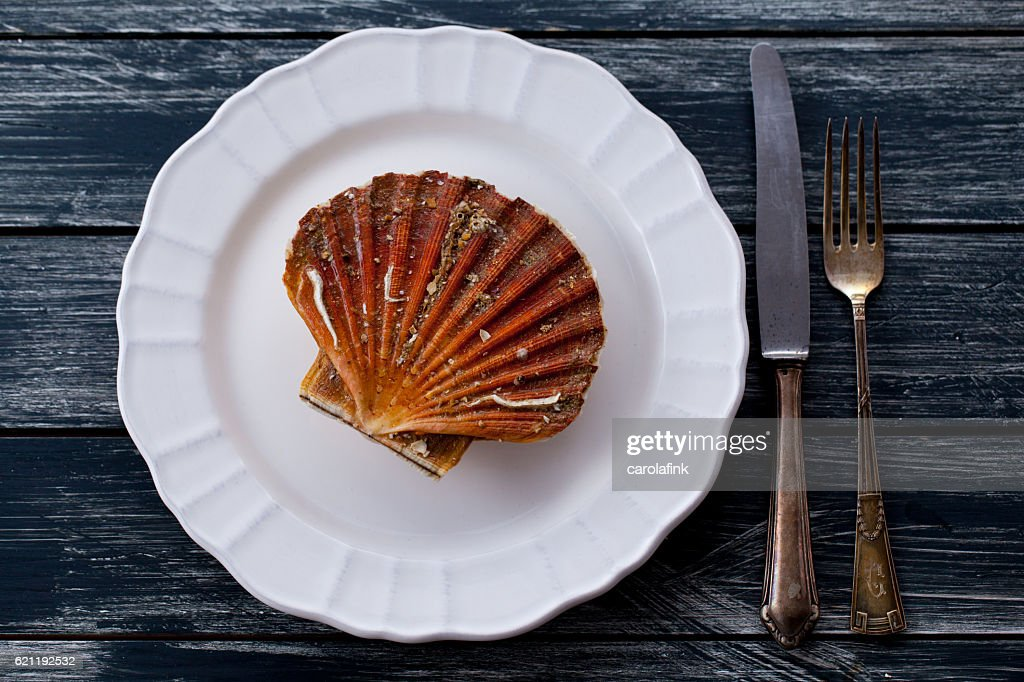 Fresh scallop : Stock-Foto