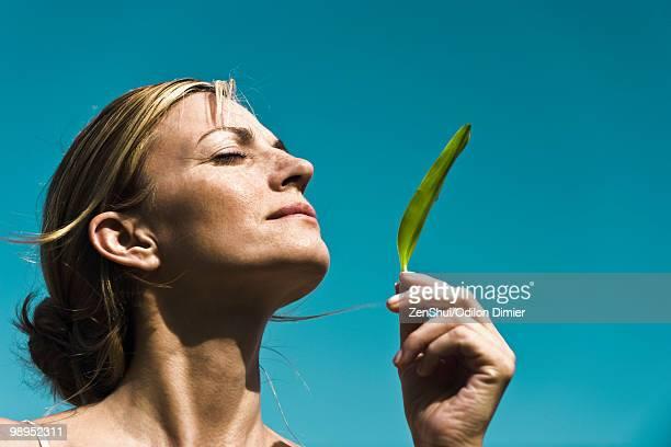 fresh scent of nature - cabeza hacia atrás fotografías e imágenes de stock