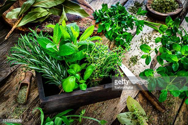 fresh scented organic herbs for cooking shot on rustic kitchen table - herb stock pictures, royalty-free photos & images