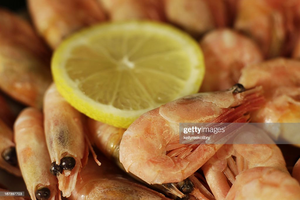 Fresh shrimp : Stock Photo