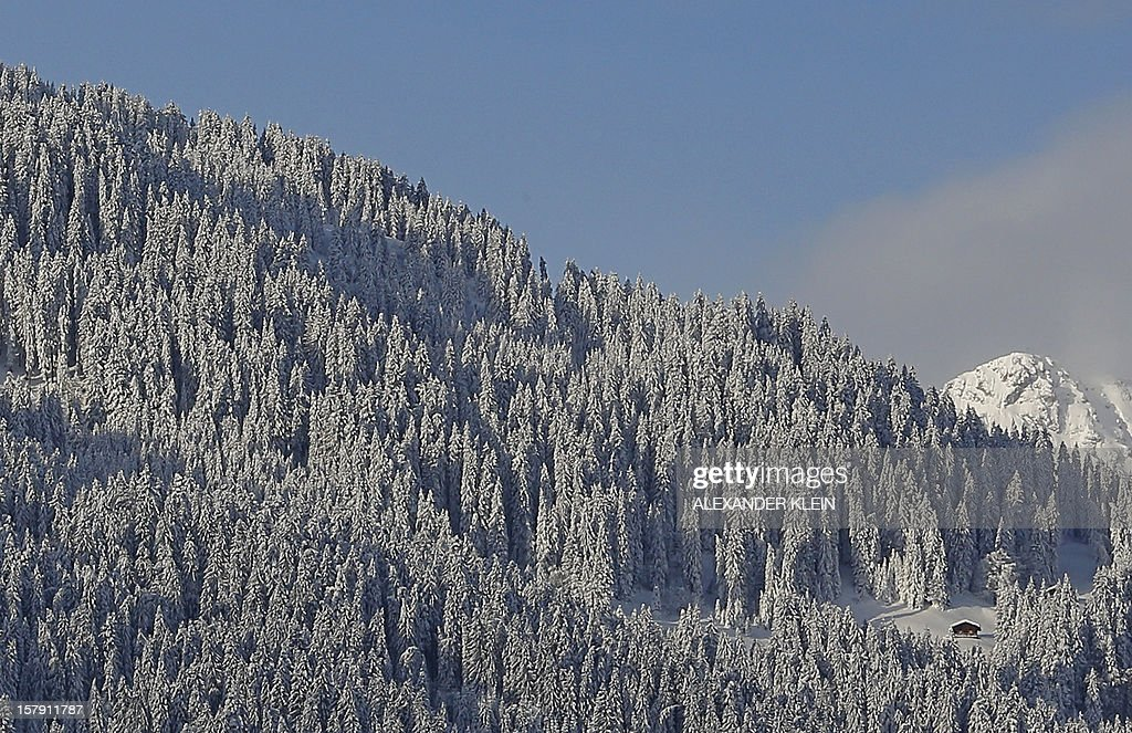 Fresh snow covers trees next to a house in the mountains of Schruns, Austria on December 7, 2012.