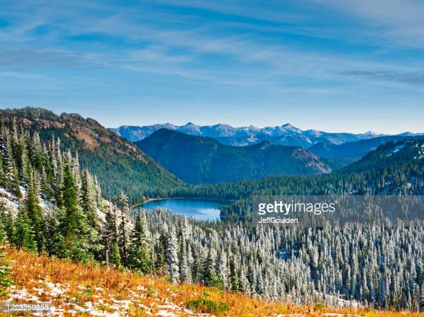 fresh snow near dewey lake - jeff goulden stock pictures, royalty-free photos & images