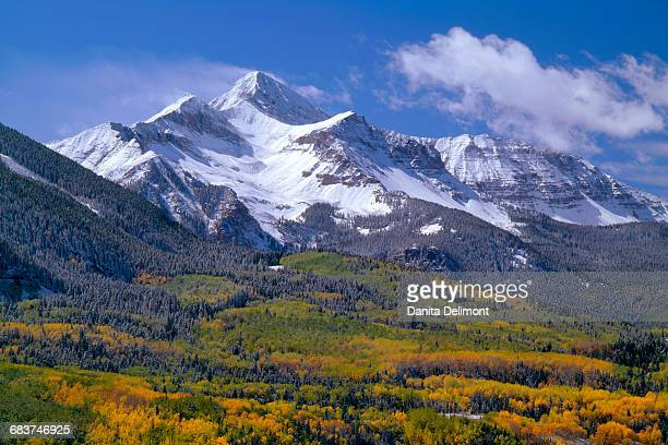 fresh snow on mount wilson and forest in autumn colors, uncompahgre national forest, colorado, usa - mt wilson colorado stock photos and pictures