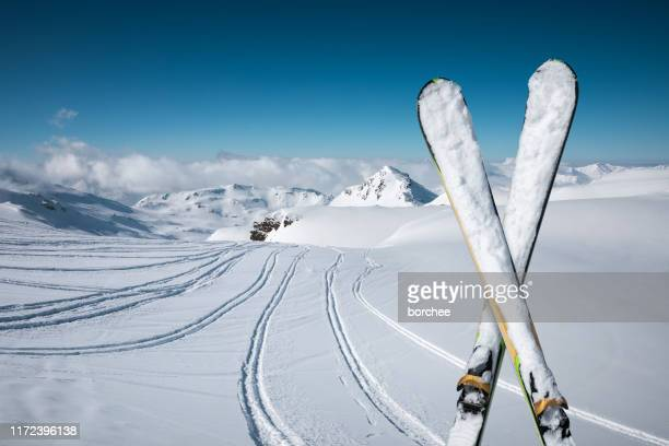 fresh snow - skiing stock pictures, royalty-free photos & images