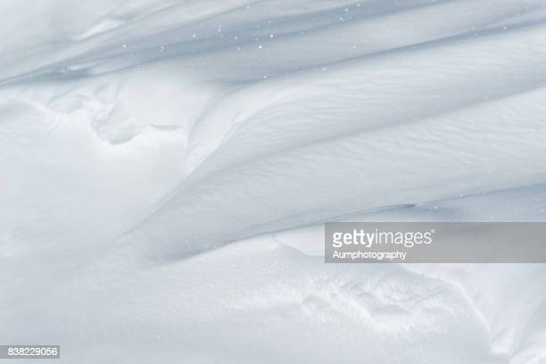 fresh snow - powder snow stock pictures, royalty-free photos & images