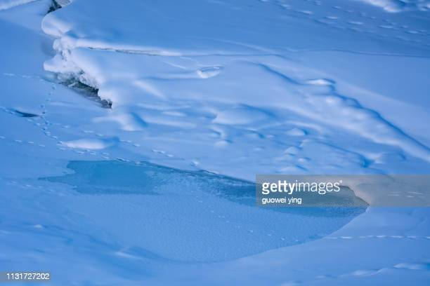 fresh snow surface - 雪 stock pictures, royalty-free photos & images
