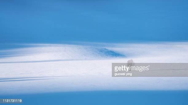 fresh snow surface - 深い雪 ストックフォトと画像