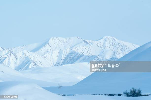 fresh snow surface - photography themes stock pictures, royalty-free photos & images