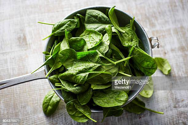 fresh spinach leaves in colander on wood - spinach stock pictures, royalty-free photos & images