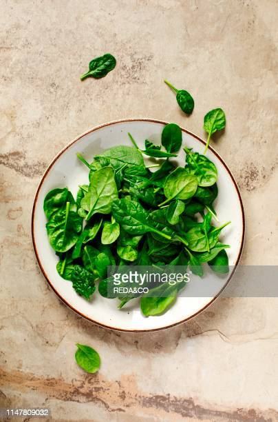 Fresh spinach on plate top view