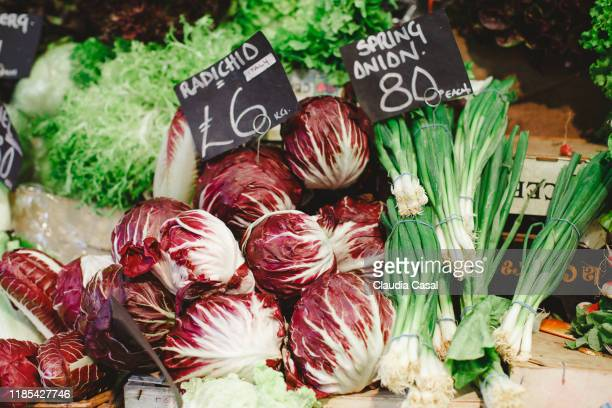fresh spring onions and radicchio in a market stall in london - italian culture stock pictures, royalty-free photos & images