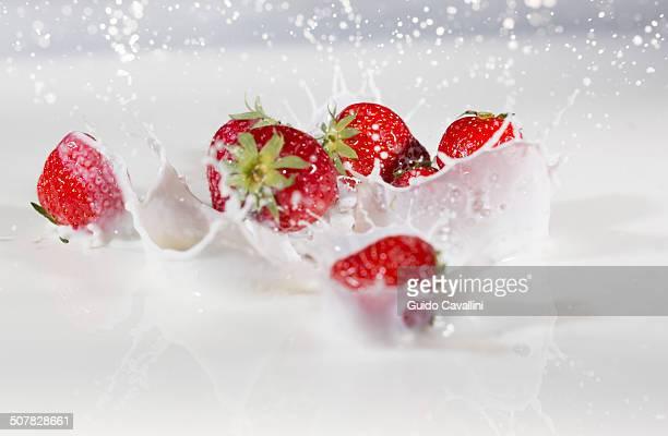 Fresh strawberries splashing into milk