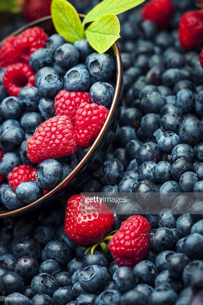 Fresh Summer Berries : Stock Photo
