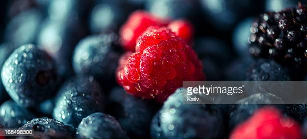 fresh summer berries - berry fruit stock pictures, royalty-free photos & images