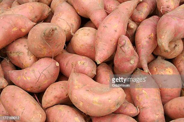 Fresh Sweet Potatoes Yams