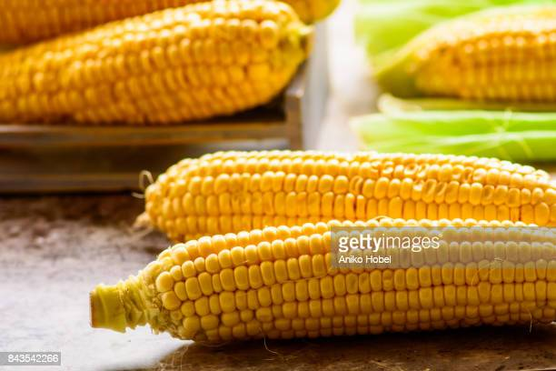 Fresh sweetcorns