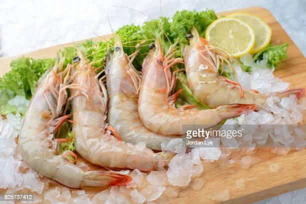 Fresh tiger prawn