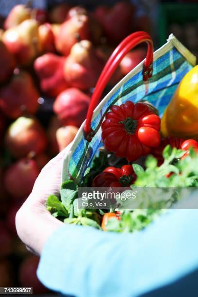 Fresh tomatoes and herbs in a checked shopping bag