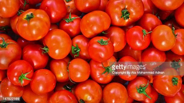 fresh tomatoes - tomate - fotografias e filmes do acervo