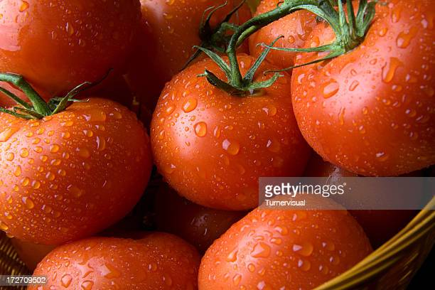 fresh tomatoes - ripe stock pictures, royalty-free photos & images