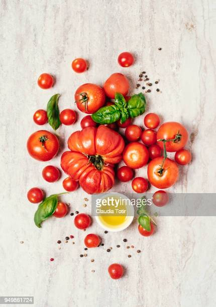 fresh tomatoes - vegetable harvest stock pictures, royalty-free photos & images