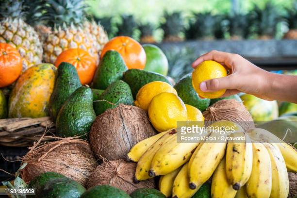 fresh tropical fruit on market stall, mauritius island - tropical fruit stock pictures, royalty-free photos & images