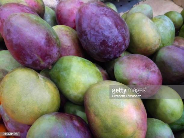 Fresh tropical mangoes