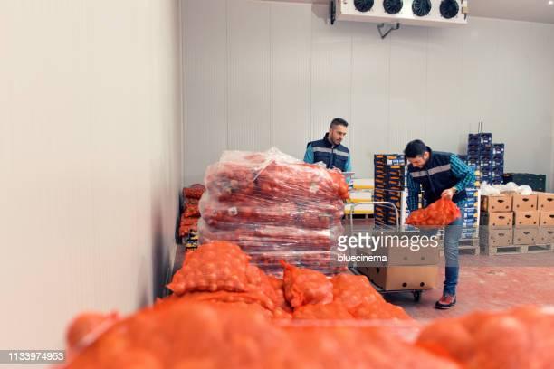 生鮮野菜の倉庫 - 食料倉庫 ストックフォトと画像