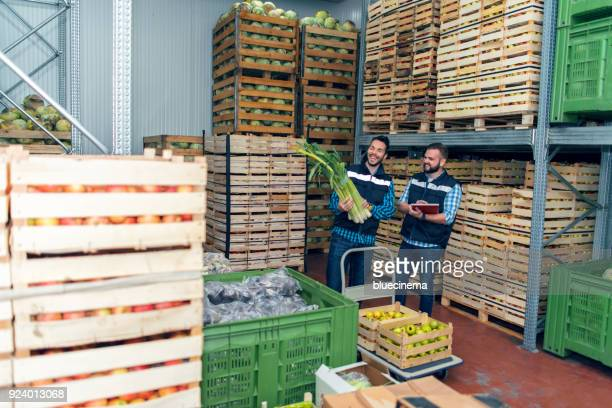 fresh vegetables in warehouse - freezer stock photos and pictures