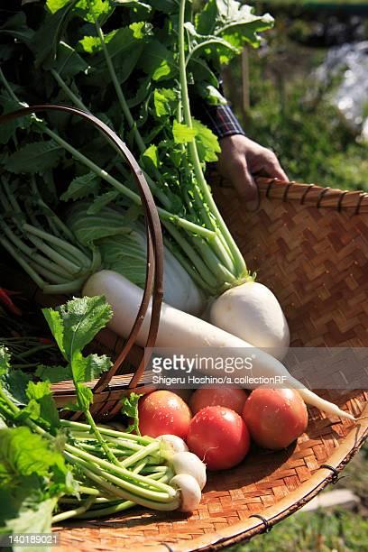 Fresh Vegetables on Bamboo Basket