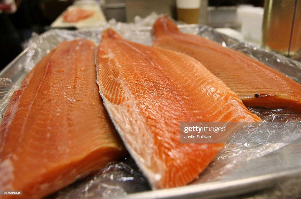 West Coast Salmon Fishing Season Canceled : News Photo