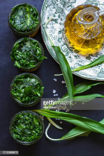 fresh wild garlic with salt and olive oil - ail des ours photos et images de collection